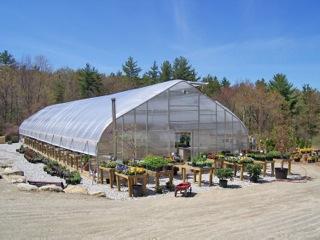 troys2 masonbrook1 perrones3 chester3 - Rimol Greenhouse Of Photos