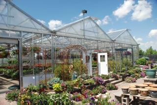 troys2 - Rimol Greenhouse Of Photos